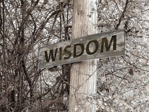 how do we acquire wisdom