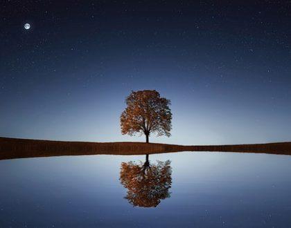 finding peace. ramadan